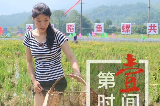 """庆祝首个""""丰收节""""!看桂林农民嗨成这样"""