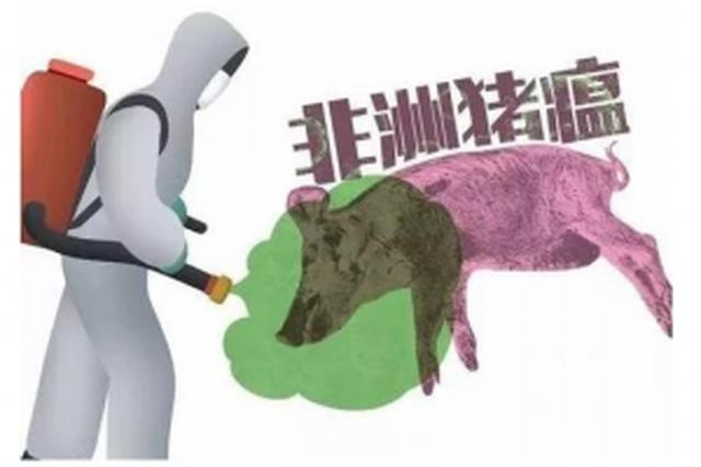 市民不要慌 南宁目前未发现非洲猪瘟疫情