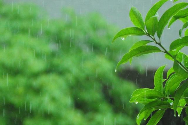 广西今明两天气温略升 大部地区仍有小雨来烦扰