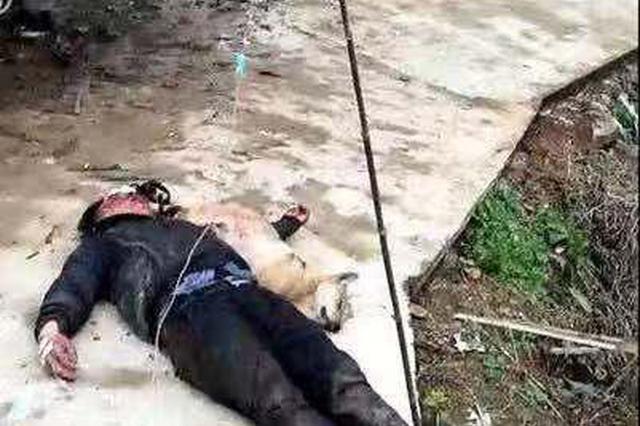 广西蒙山男子疑因偷狗被打 警方:正在调查