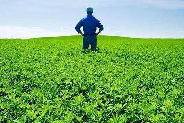 """将来谁种地?请看广西""""新农人""""的答卷"""