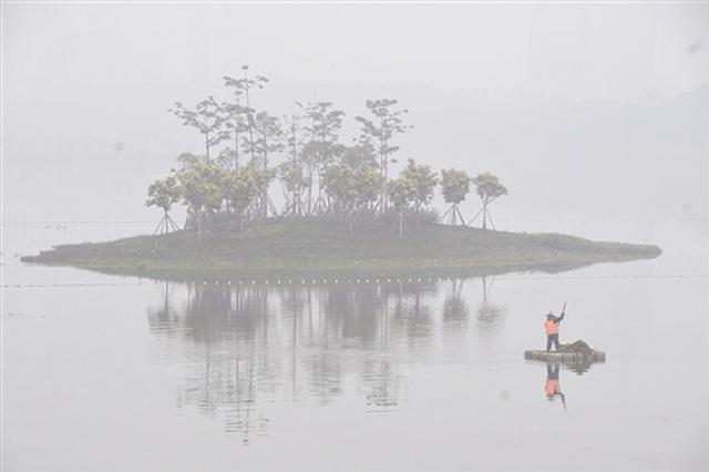 大雾天回南天一起凑热闹 雾蒙蒙有点潮持续到周末