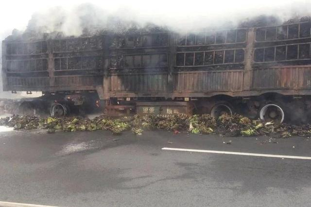泉南高速上一货车突发自燃!一车香蕉被烧熟