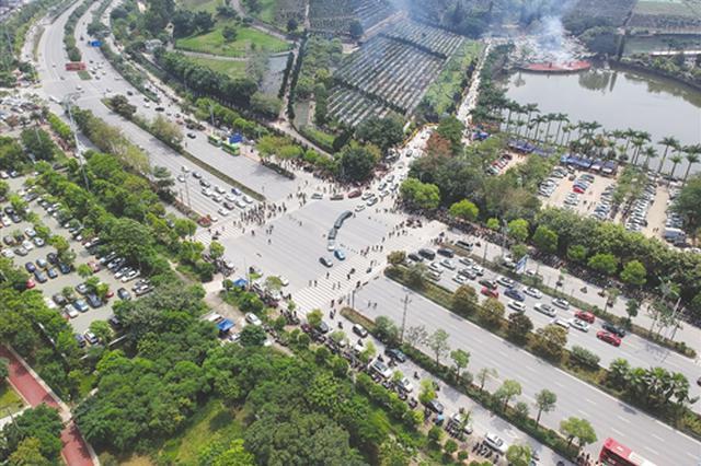 清明节广西133万人次上山祭扫 避开9-12时高峰时段
