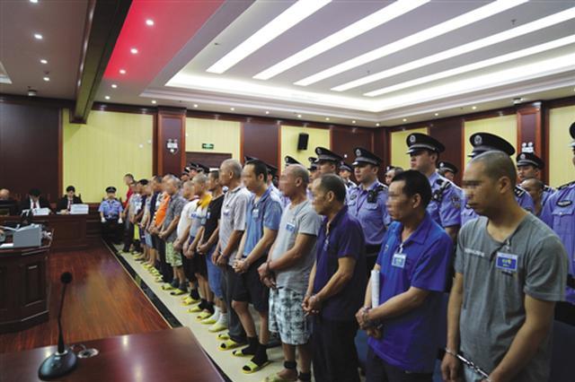 盗伐林木、聚众冲击国家机关 横县44人涉恶团伙受审