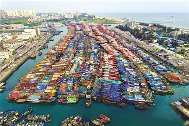 南海进入休渔期 为期三个半月!北海数千艘渔船休假