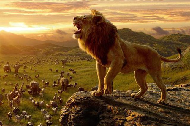 真人版《狮子王》国内7月12日上映 提前北美一周