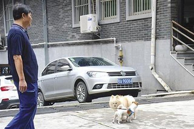 小区养狗引争议 物业、居民、养狗人士有话说