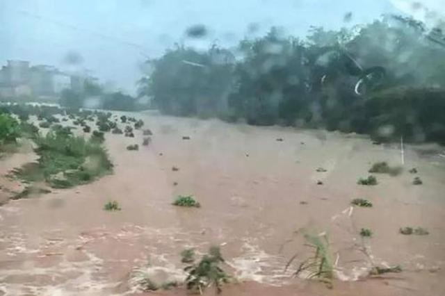 洪灾频发易引发食物中毒 广西疾控部门发布提示