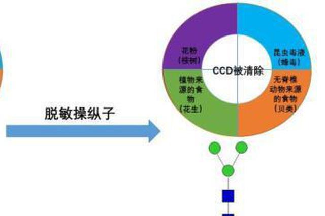 中国学者新发现治疗过敏新途径 已申请国家专利保护