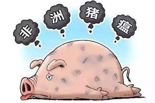 偷卖患非洲猪瘟生猪引发疫情 男子获刑两年九个月