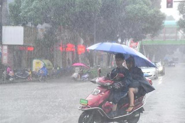 受厄尔尼诺影响 8—9月还有台风严重影响广西