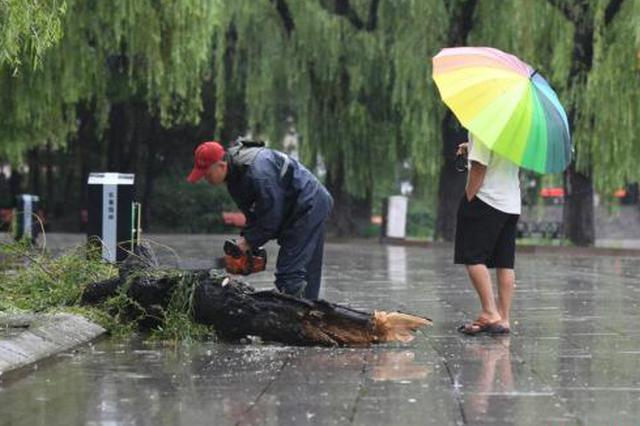 """台风""""白鹿""""将登陆 西北华北黄淮再迎降水过程"""