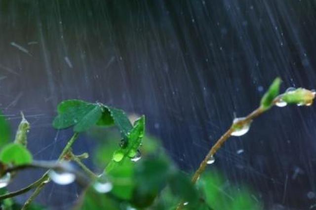"""台风""""白鹿""""已登陆!广西将迎来新一轮暴雨和降温"""