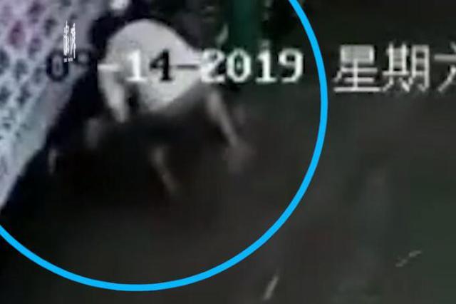 广西上思县突降暴雨 女孩倒在水中男子去拉双双身亡