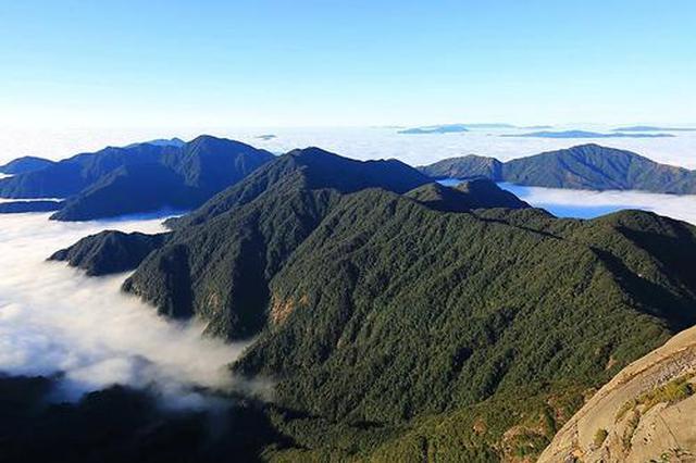 漓江源头的生态守候者——与猫儿山相伴了20年