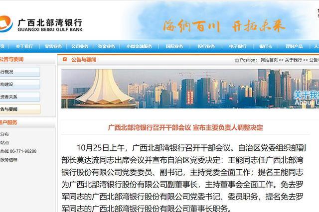 原桂林银行董事长王能赴任北部湾银行:提名副董事长