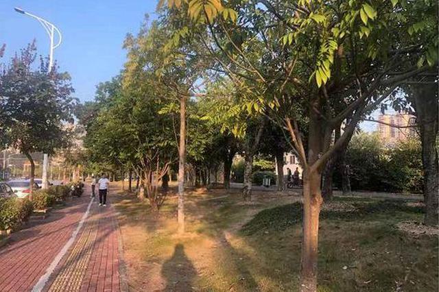 网传南宁一草坪有人投毒 主人痛诉:十几只狗狗死亡