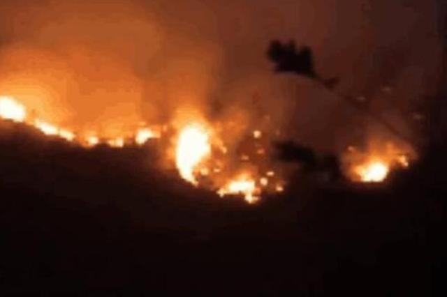提醒!广西接连发生多起山火 天干物燥要注意防范