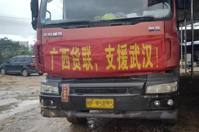 给力!平南苏村500户农民自发捐款购买蔬菜支援武汉