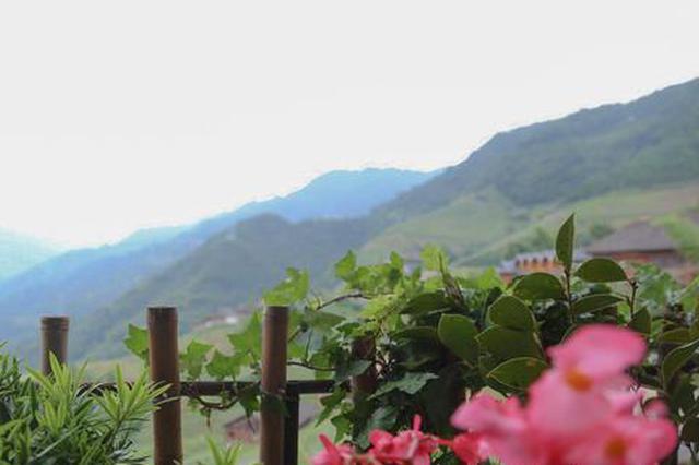 千名记者一线行|百年壮寨新构建 旅游扶贫享美丽乡村