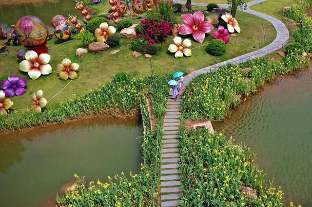 夏日清凉好去处!青秀山景区8万株水生花卉竞相开放