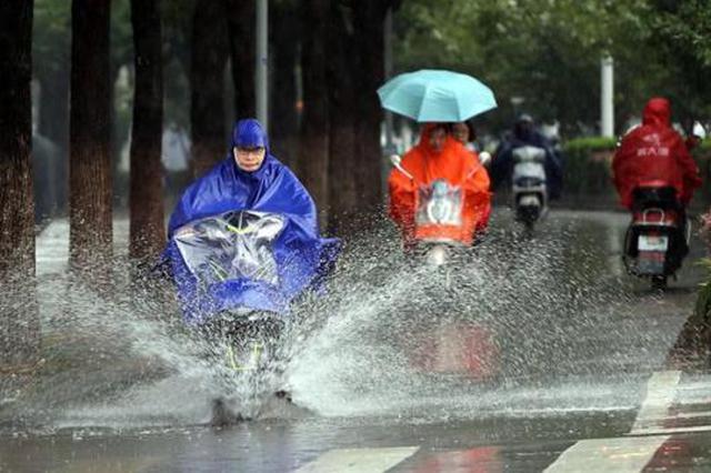 """台风""""森拉克""""于8月2日停编 对广西影响趋于结束"""