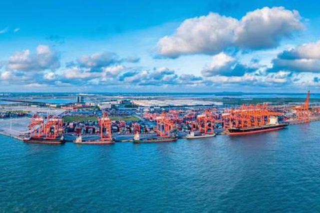 西部陆海新通道沿线地区自广西口岸进出口逆势增长
