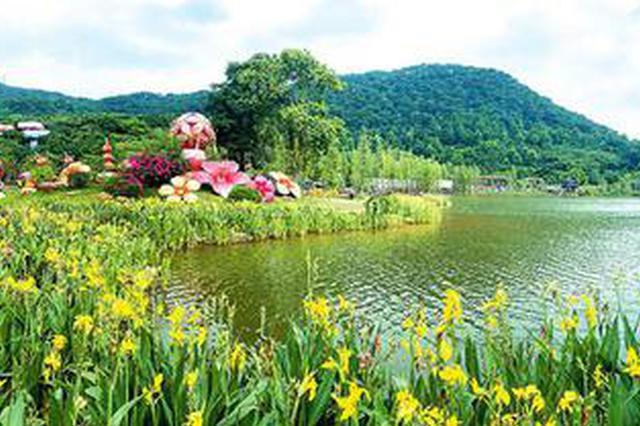 赏花去!近8万株水生花卉在南宁青秀山东区展出(图)