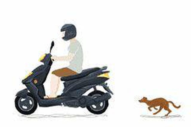 9月1日起,骑乘绿牌电动自行车不戴头盔将被罚20元