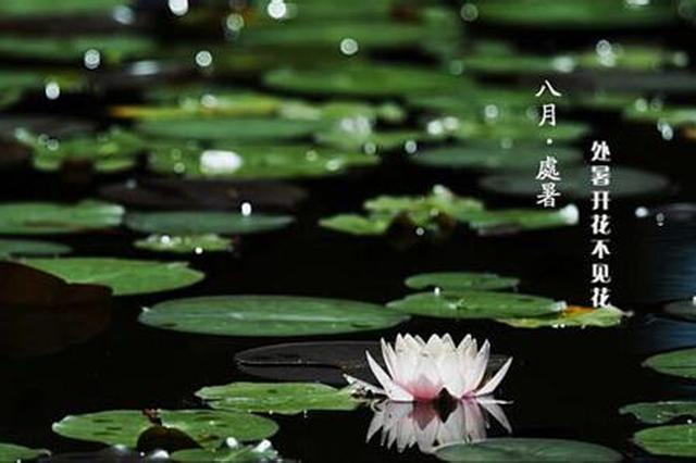 处暑暑未消!周末炎热有阵雨 26日起广西又将迎降雨