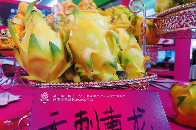 广西火龙果产量位居全国第一 这些名贵品种你知道吗