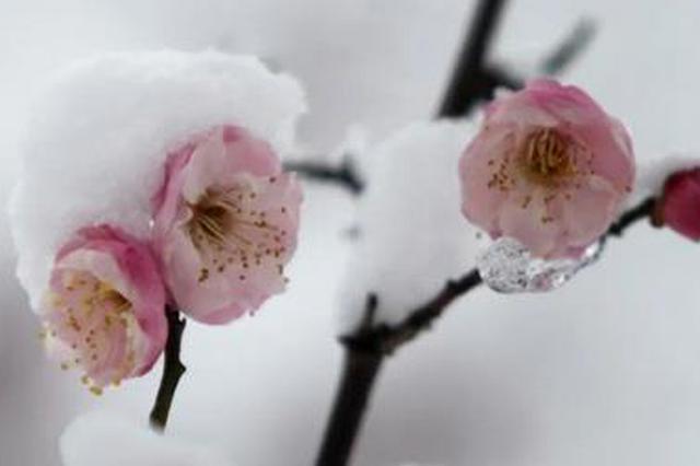 今日小雪!冷空气已进入桂北 预计未来一周多阴雨天