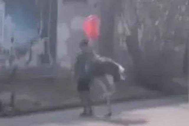 广西北海一鸵鸟趁主人不注意逃上街头狂奔 被罩头拽走