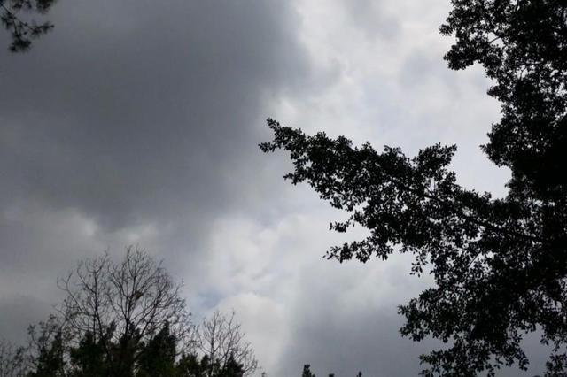 """广西新一轮降雨又""""到货""""了 局部有雷暴大风等天气"""