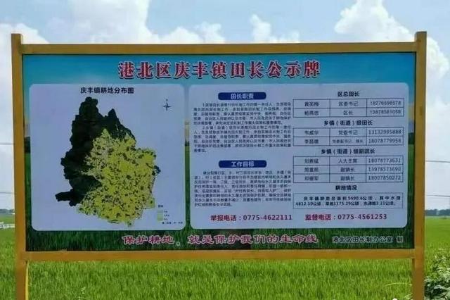 广西全面推行田长制 实行耕地保护党政同责和网格化管理