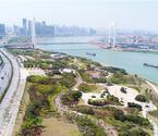 邕江:是堤是路是风景