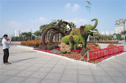 滨湖广场景观小品吸引市民驻足拍照 本报记者 宋延康 摄