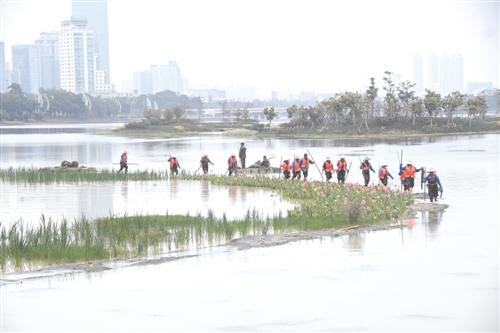 种植沉水植物需要几十名工人在有水的环境下进行