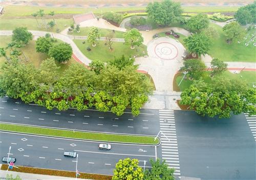 ?荔滨大道两侧绿树成荫,风景如画 本报记者 潘浩 摄