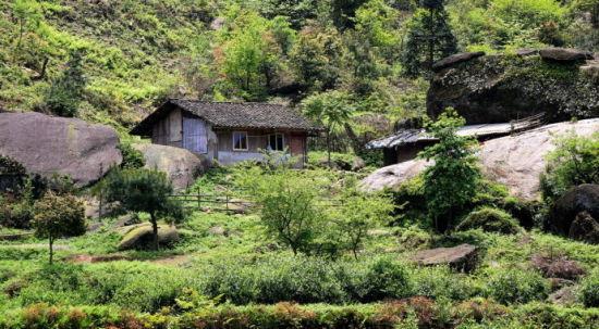 大石山深处,一间简易的瓦房,就住着一家人,种一小处山茶和放牧为生。图:新浪博主/南宁阿华