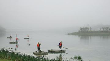 南宁现能见度不足200米强浓雾
