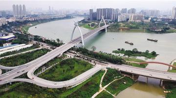 走进邕江两岸绿化工程 听背后的故事