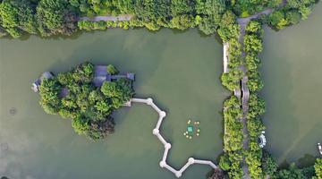 桂林湖光夏日美