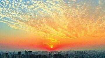 """南宁天空出现美丽的""""鱼鳞云"""""""
