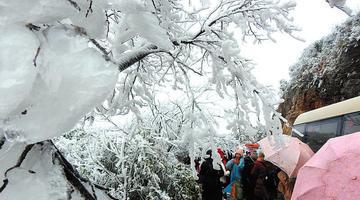 广西也有赏雪胜地