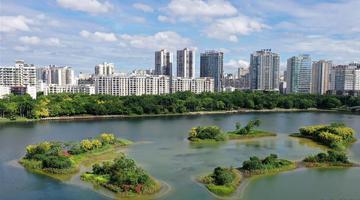 广西南宁:湖光城色暑日美