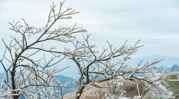 广西环江:龙岩乡万亩草甸又现冰雪世界
