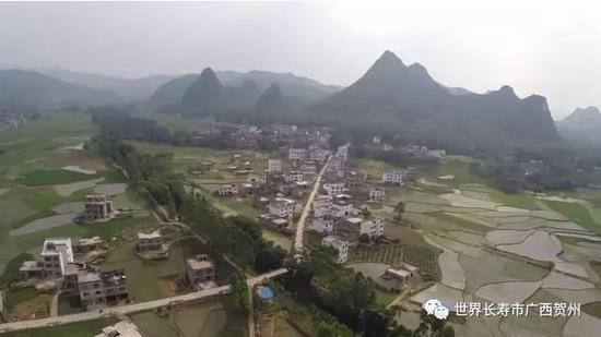 平桂区鹅塘镇芦岗村全貌