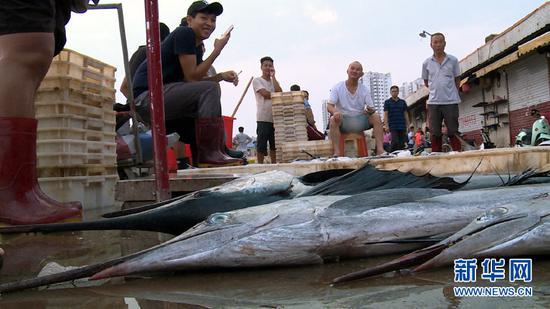 9月18日傍晚,在广西北海市侨港镇电建渔港,海产品正待价而沽。